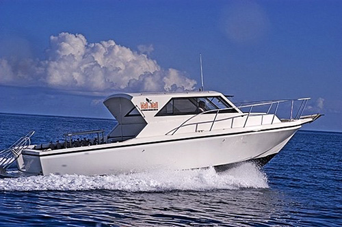 With two large 36 ft and 32 ft custom built dive boats we can offer you all the amenities that small boats only dream of!